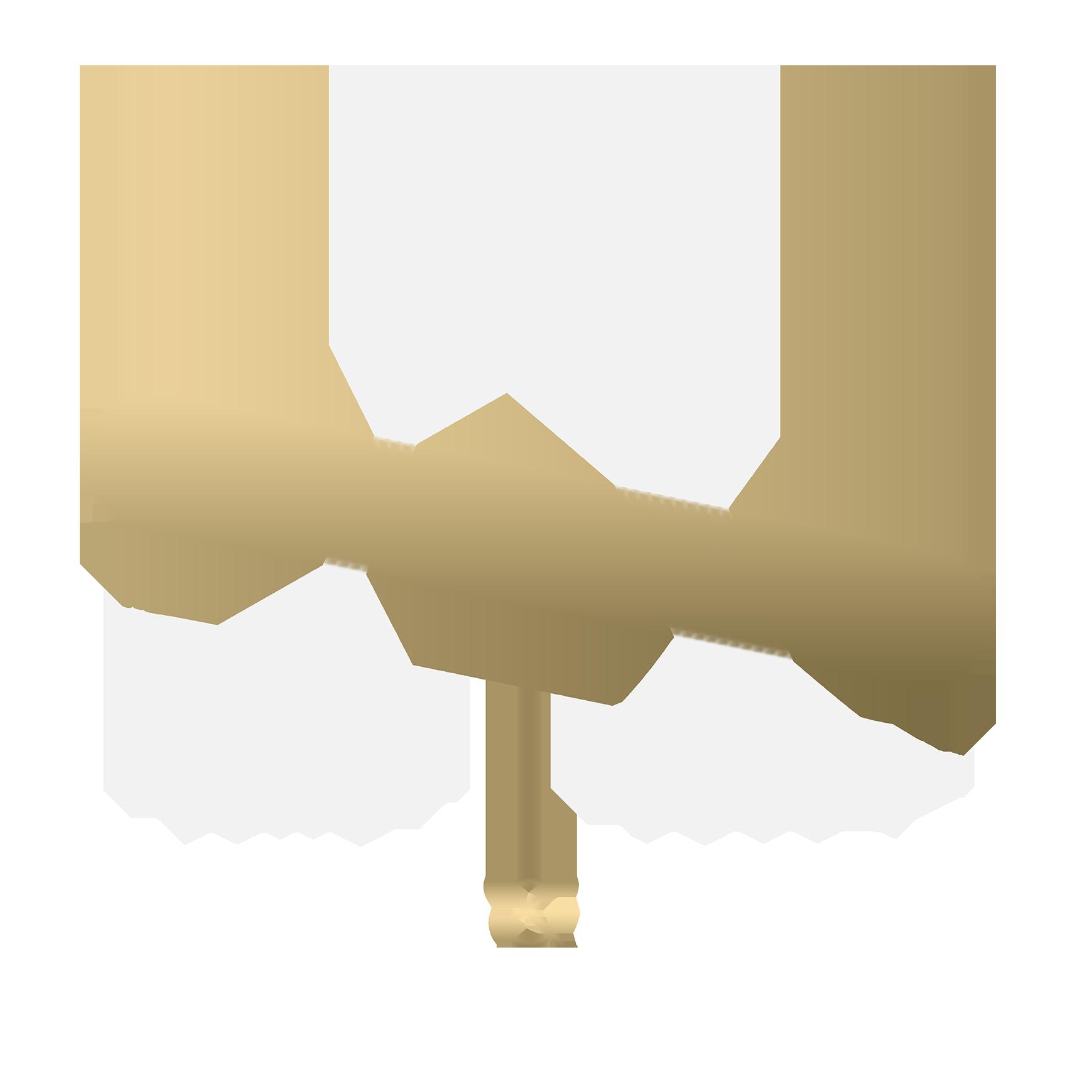 AnimaAndAmareLogo